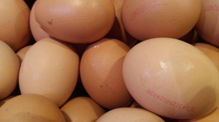 aviram-balaguer-huevos-gordos