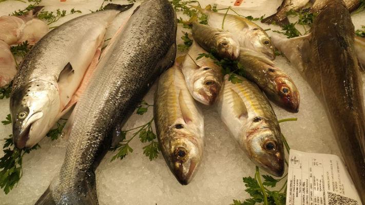 Mercat-11-setembre-peixos-alejandro-pescado